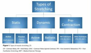 forms of stretching and benefits